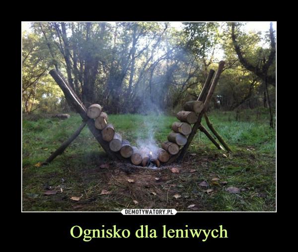 Ognisko dla leniwych –