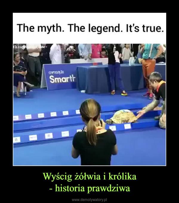 Wyścig żółwia i królika- historia prawdziwa –