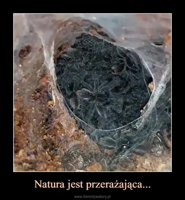 Natura jest przerażająca... –