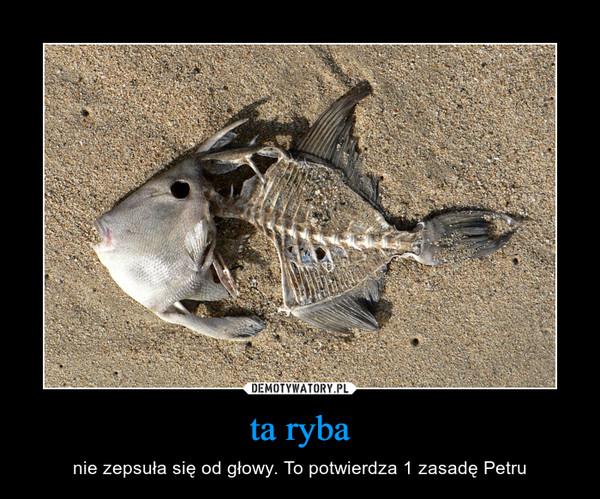 ta ryba – nie zepsuła się od głowy. To potwierdza 1 zasadę Petru