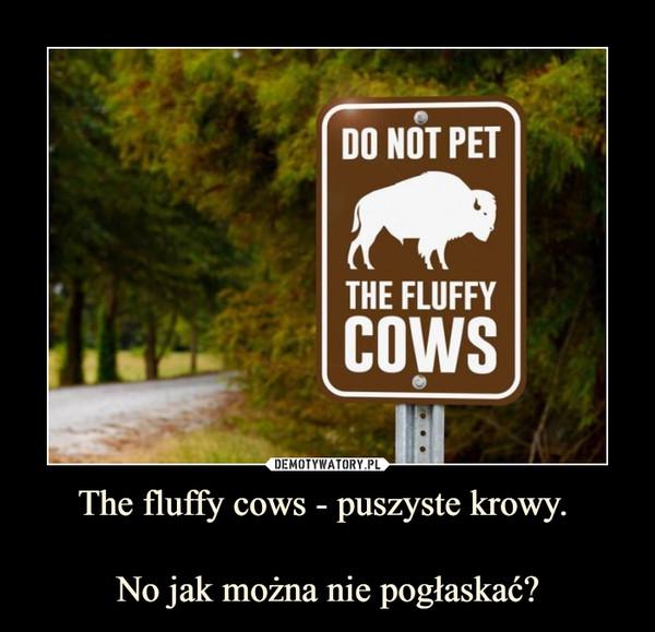 The fluffy cows - puszyste krowy. No jak można nie pogłaskać? –