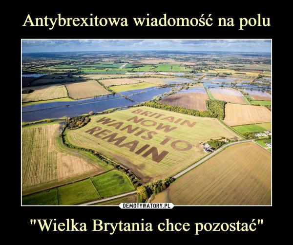 """""""Wielka Brytania chce pozostać"""" –  Britain wants to remain"""