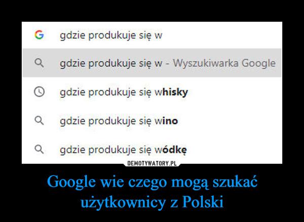 Google wie czego mogą szukać użytkownicy z Polski –