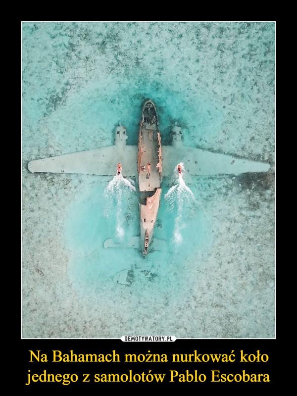 Na Bahamach można nurkować koło jednego z samolotów Pablo Escobara –