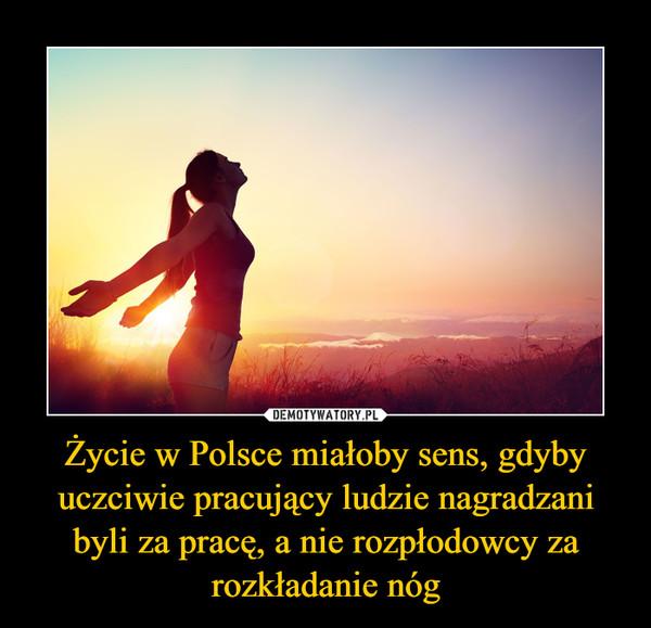 Życie w Polsce miałoby sens, gdyby uczciwie pracujący ludzie nagradzani byli za pracę, a nie rozpłodowcy za rozkładanie nóg –