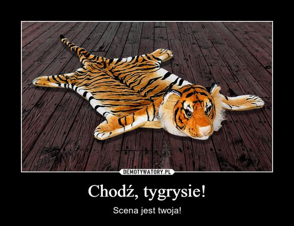 Chodź, tygrysie! – Scena jest twoja!