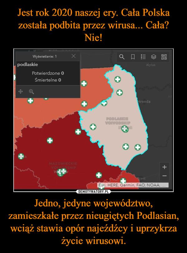 Jedno, jedyne województwo, zamieszkałe przez nieugiętych Podlasian, wciąż stawia opór najeźdźcy i uprzykrza życie wirusowi. –