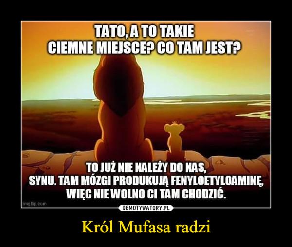 Król Mufasa radzi –