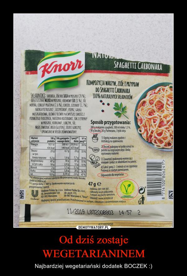 Od dziś zostaje WEGETARIANINEM – Najbardziej wegetariański dodatek BOCZEK :)