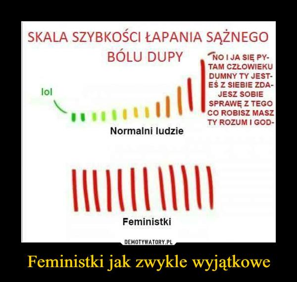 Feministki jak zwykle wyjątkowe –