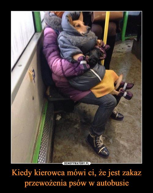 Kiedy kierowca mówi ci, że jest zakaz przewożenia psów w autobusie
