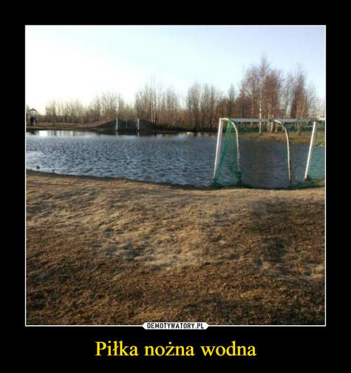 Piłka nożna wodna