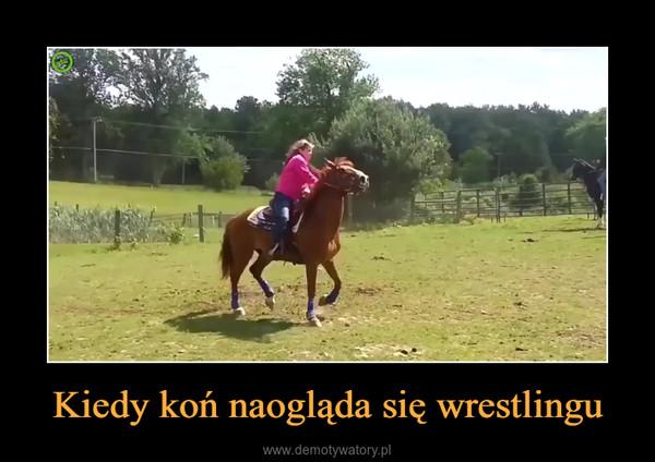 Kiedy koń naogląda się wrestlingu –