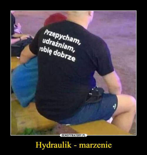 Hydraulik - marzenie