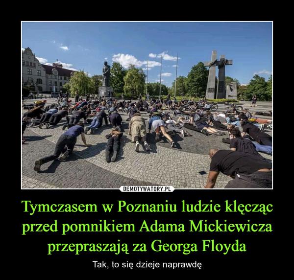 Tymczasem w Poznaniu ludzie klęcząc przed pomnikiem Adama Mickiewicza przepraszają za Georga Floyda – Tak, to się dzieje naprawdę