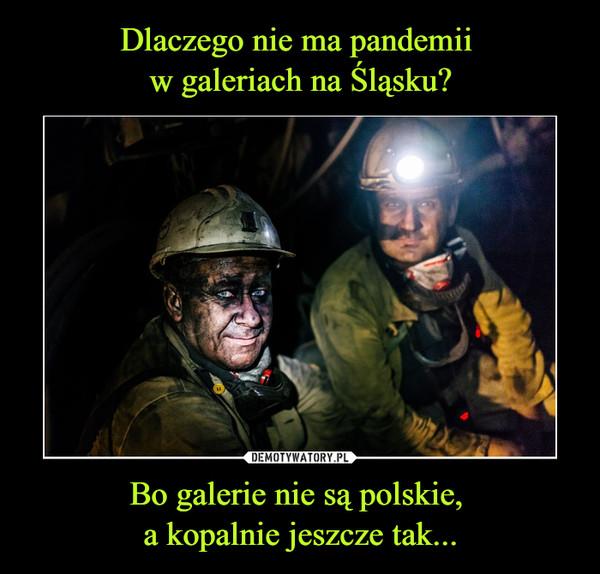Bo galerie nie są polskie, a kopalnie jeszcze tak... –