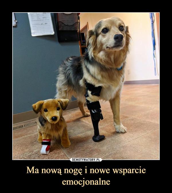 Ma nową nogę i nowe wsparcie emocjonalne –