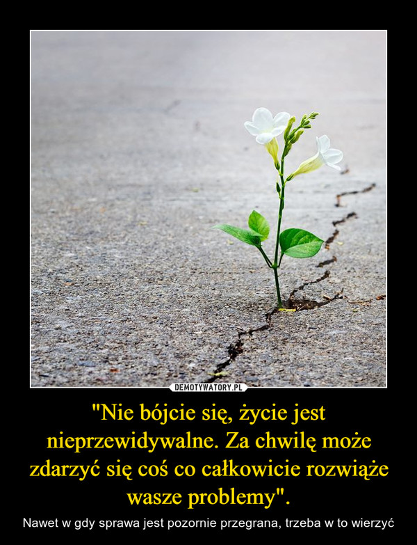 """""""Nie bójcie się, życie jest nieprzewidywalne. Za chwilę może zdarzyć się coś co całkowicie rozwiąże wasze problemy"""". – Nawet w gdy sprawa jest pozornie przegrana, trzeba w to wierzyć"""