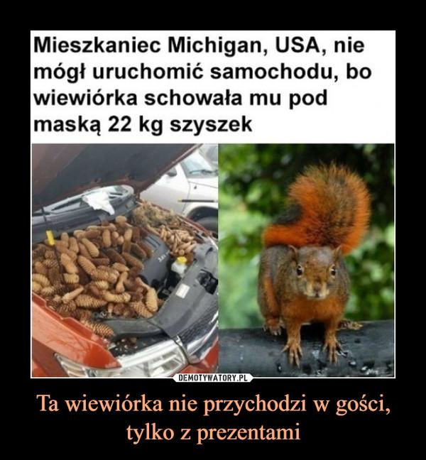 Ta wiewiórka nie przychodzi w gości, tylko z prezentami –  Mieszkaniec Michigan, USA, nie mógł uruchomić samochodu, bo wiewiórka schowała mu pod maską 22 kg szyszek