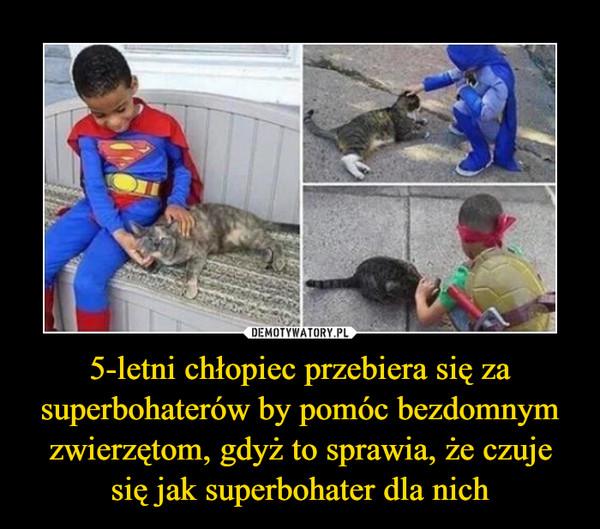 5-letni chłopiec przebiera się za superbohaterów by pomóc bezdomnym zwierzętom, gdyż to sprawia, że czuje się jak superbohater dla nich –