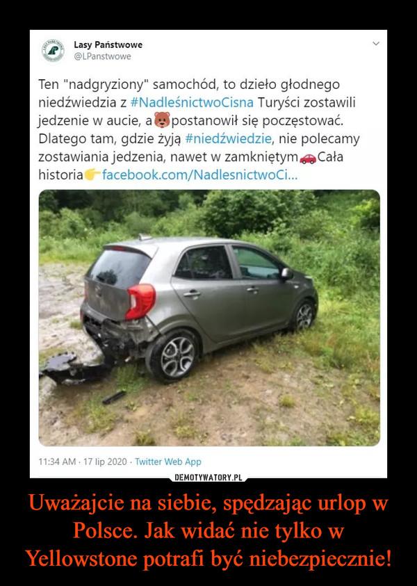 Uważajcie na siebie, spędzając urlop w Polsce. Jak widać nie tylko w Yellowstone potrafi być niebezpiecznie! –