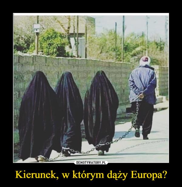 Kierunek, w którym dąży Europa? –