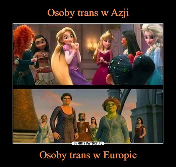 Osoby trans w Europie –