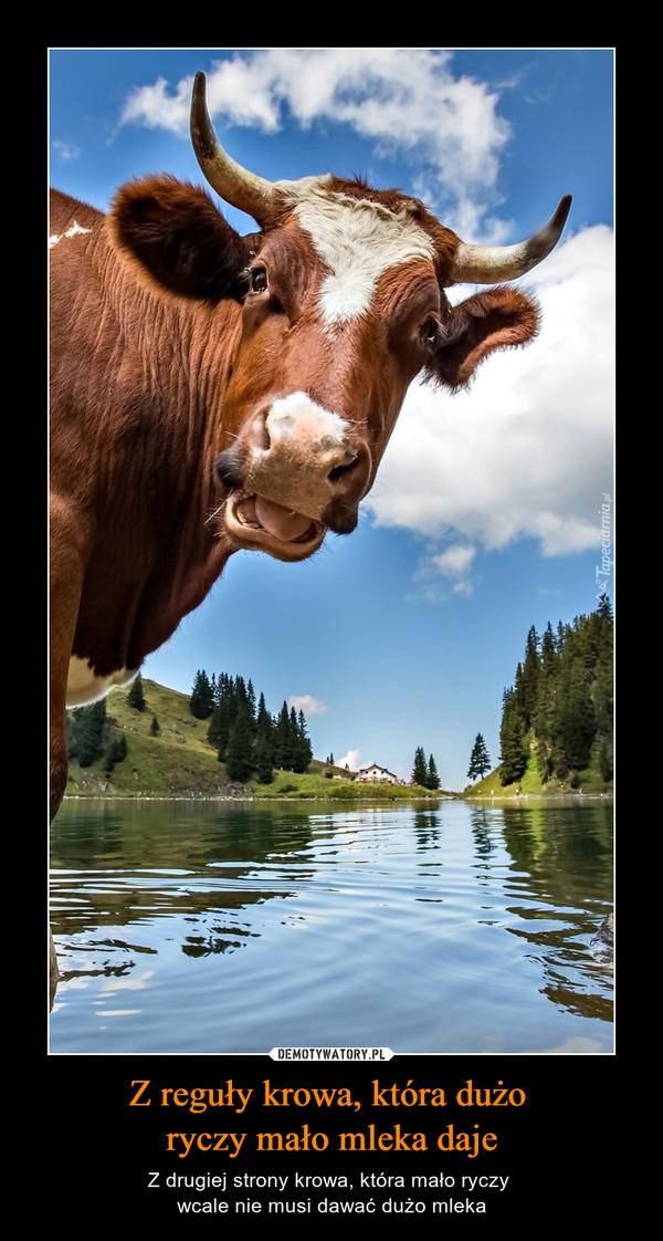 Z reguły krowa, która dużo ryczy mało mleka daje – Z drugiej strony krowa, która mało ryczy wcale nie musi dawać dużo mleka