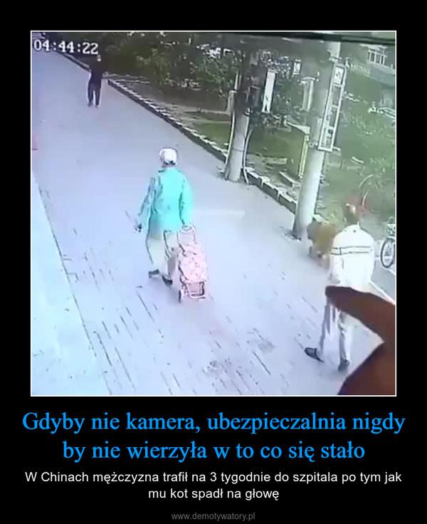 Gdyby nie kamera, ubezpieczalnia nigdy by nie wierzyła w to co się stało – W Chinach mężczyzna trafił na 3 tygodnie do szpitala po tym jak mu kot spadł na głowę