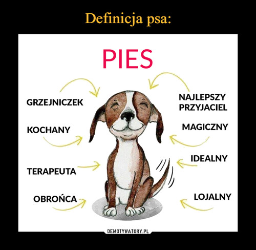 Definicja psa: