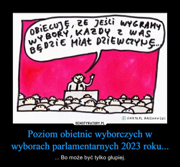 Poziom obietnic wyborczych w wyborach parlamentarnych 2023 roku... – ... Bo może być tylko głupiej.