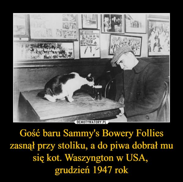 Gość baru Sammy's Bowery Follies zasnął przy stoliku, a do piwa dobrał mu się kot. Waszyngton w USA, grudzień 1947 rok –