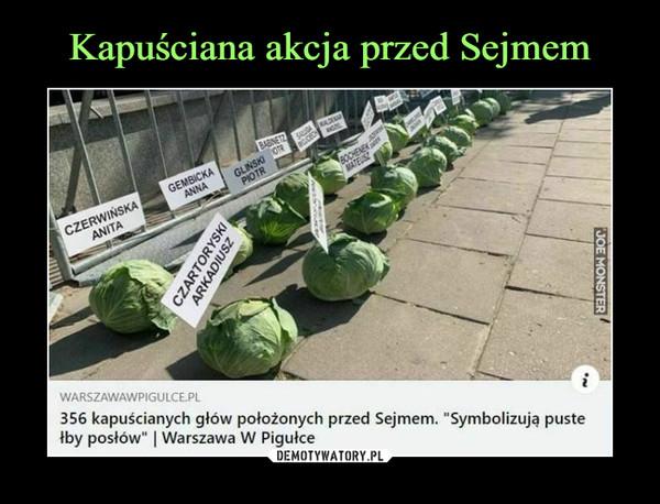 """–  warszawawpigulce.pl356 kapuścianych głów położonych przed Sejmem. """"Symbolizują pustełby posłów""""   Warszawa W Pigułce"""