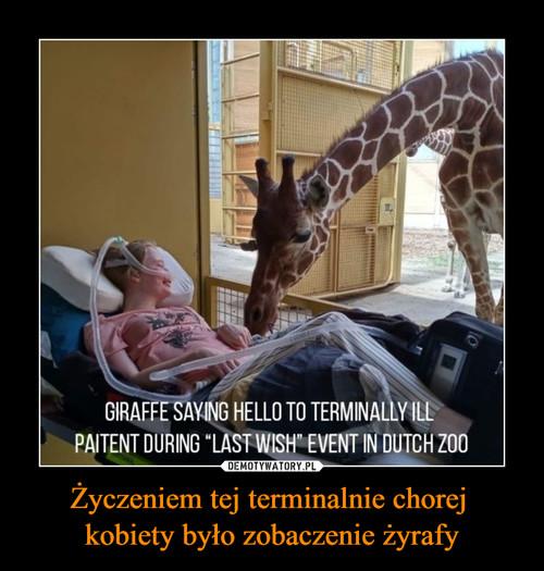 Życzeniem tej terminalnie chorej  kobiety było zobaczenie żyrafy