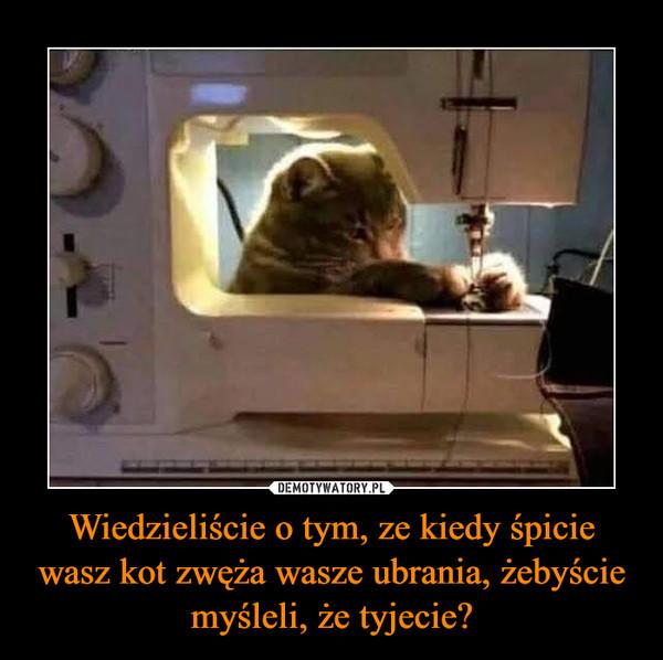 Wiedzieliście o tym, ze kiedy śpicie wasz kot zwęża wasze ubrania, żebyście myśleli, że tyjecie?