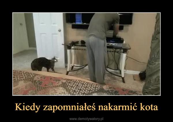 Kiedy zapomniałeś nakarmić kota –