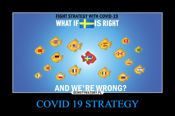 COVID 19 STRATEGY –