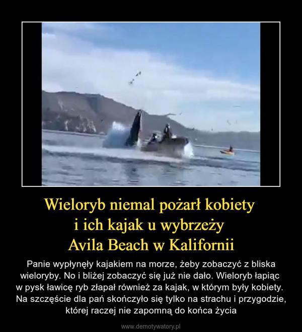 Wieloryb niemal pożarł kobiety i ich kajak u wybrzeży Avila Beach w Kalifornii – Panie wypłynęły kajakiem na morze, żeby zobaczyć z bliska wieloryby. No i bliżej zobaczyć się już nie dało. Wieloryb łapiąc w pysk ławicę ryb złapał również za kajak, w którym były kobiety. Na szczęście dla pań skończyło się tylko na strachu i przygodzie, której raczej nie zapomną do końca życia