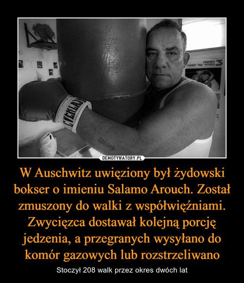 W Auschwitz uwięziony był żydowski bokser o imieniu Salamo Arouch. Został zmuszony do walki z współwięźniami. Zwycięzca dostawał kolejną porcję jedzenia, a przegranych wysyłano do komór gazowych lub rozstrzeliwano