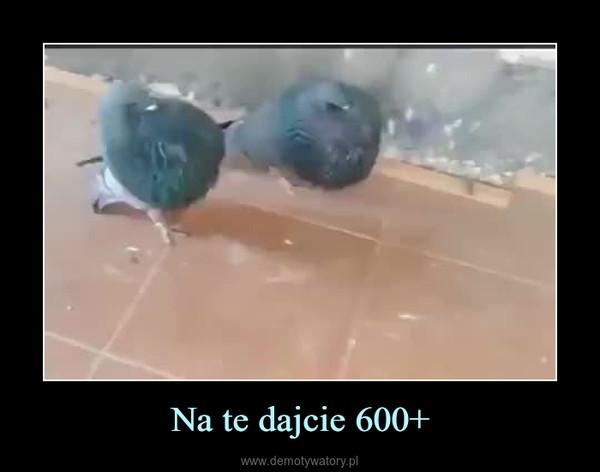 Na te dajcie 600+ –