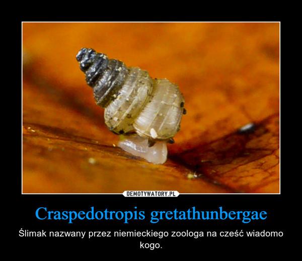 Craspedotropis gretathunbergae