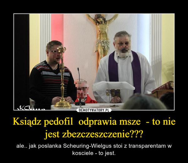 Ksiądz pedofil  odprawia msze  - to nie jest zbezczeszczenie??? – ale.. jak poslanka Scheuring-Wielgus stoi z transparentam w kosciele - to jest.