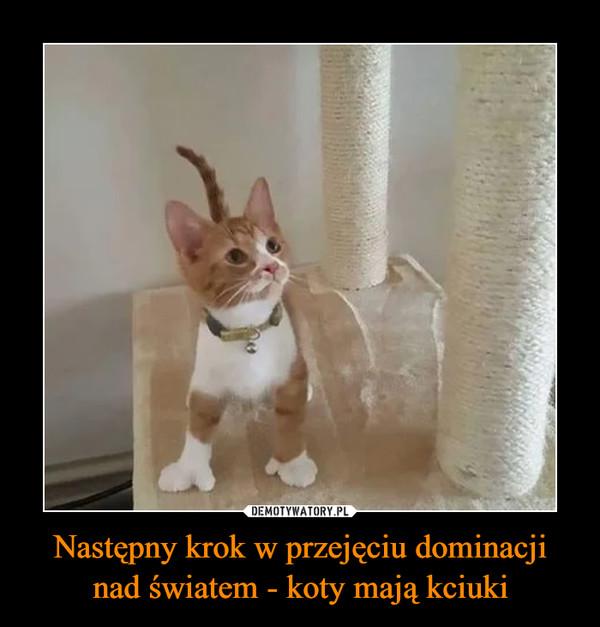 Następny krok w przejęciu dominacji nad światem - koty mają kciuki –