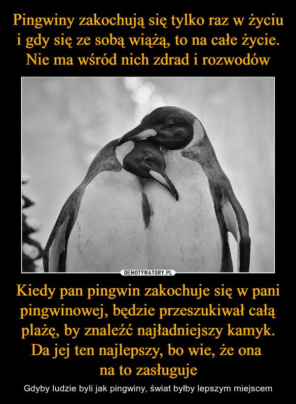 [Obrazek: 1610097430_gnbct4_600.jpg]