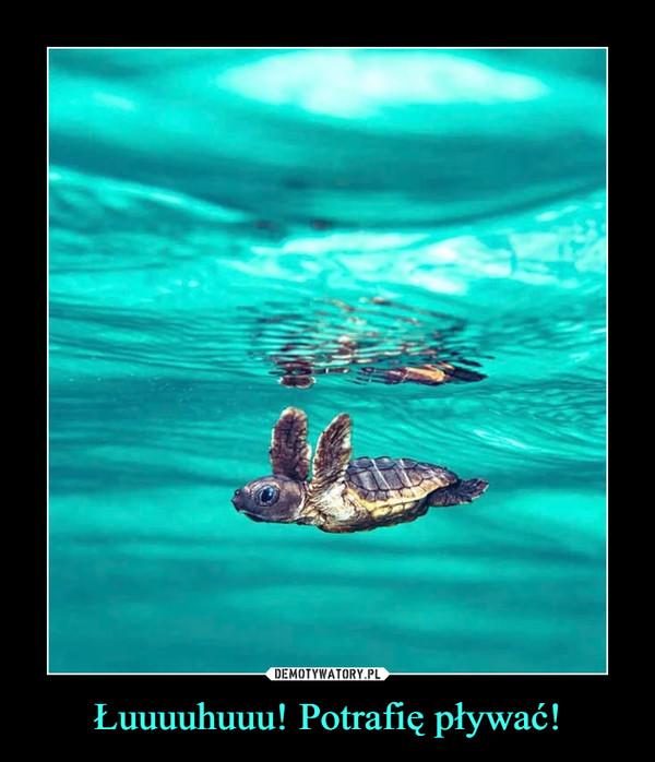 Łuuuuhuuu! Potrafię pływać! –