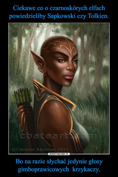 Ciekawe co o czarnoskórych elfach powiedzieliby Sapkowski czy Tolkien. Bo na razie słychać jedynie głosy gimboprawicowych  krzykaczy.
