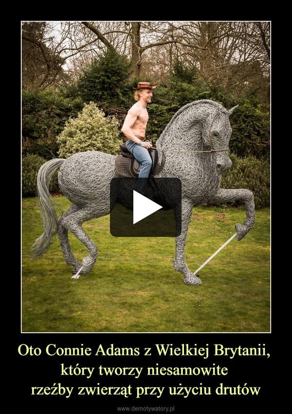 Oto Connie Adams z Wielkiej Brytanii, który tworzy niesamowite rzeźby zwierząt przy użyciu drutów –