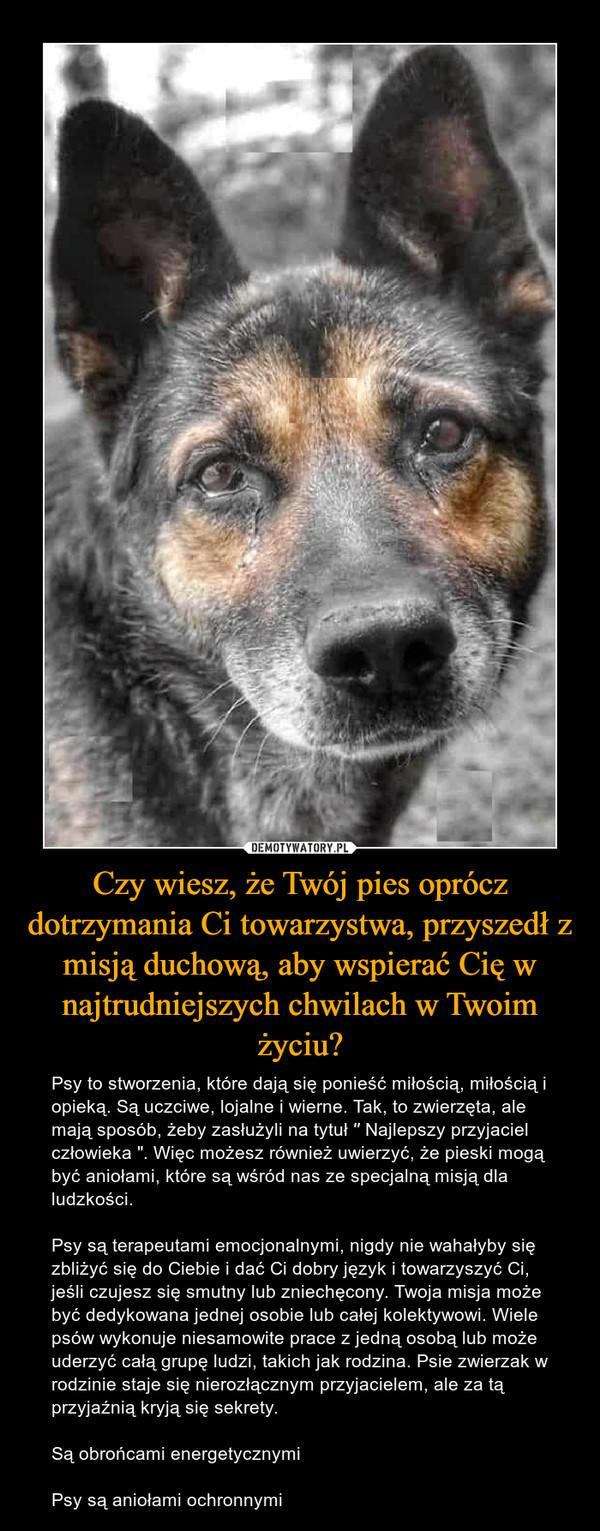 """Czy wiesz, że Twój pies oprócz dotrzymania Ci towarzystwa, przyszedł z misją duchową, aby wspierać Cię w najtrudniejszych chwilach w Twoim życiu? – Psy to stworzenia, które dają się ponieść miłością, miłością i opieką. Są uczciwe, lojalne i wierne. Tak, to zwierzęta, ale mają sposób, żeby zasłużyli na tytuł ′′ Najlepszy przyjaciel człowieka """". Więc możesz również uwierzyć, że pieski mogą być aniołami, które są wśród nas ze specjalną misją dla ludzkości.Psy są terapeutami emocjonalnymi, nigdy nie wahałyby się zbliżyć się do Ciebie i dać Ci dobry język i towarzyszyć Ci, jeśli czujesz się smutny lub zniechęcony. Twoja misja może być dedykowana jednej osobie lub całej kolektywowi. Wiele psów wykonuje niesamowite prace z jedną osobą lub może uderzyć całą grupę ludzi, takich jak rodzina. Psie zwierzak w rodzinie staje się nierozłącznym przyjacielem, ale za tą przyjaźnią kryją się sekrety.Są obrońcami energetycznymiPsy są aniołami ochronnymi"""