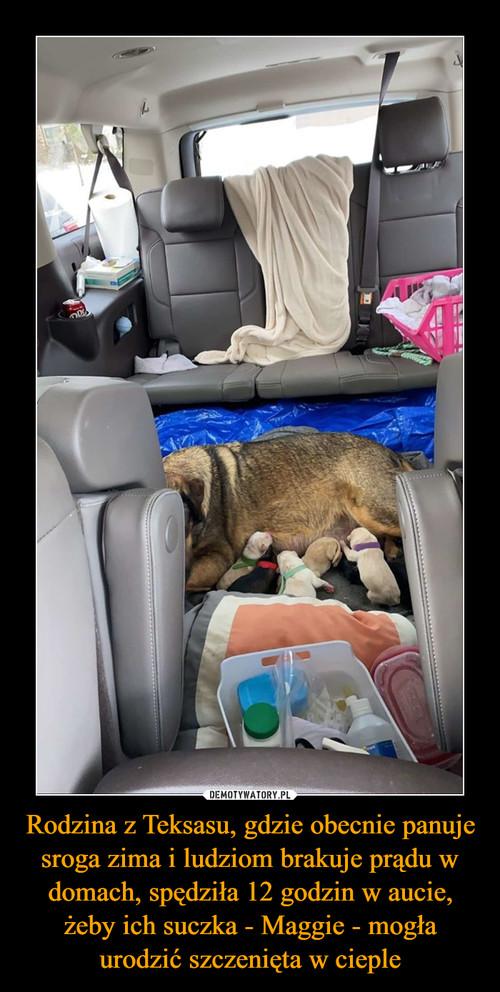 Rodzina z Teksasu, gdzie obecnie panuje sroga zima i ludziom brakuje prądu w domach, spędziła 12 godzin w aucie, żeby ich suczka - Maggie - mogła urodzić szczenięta w cieple