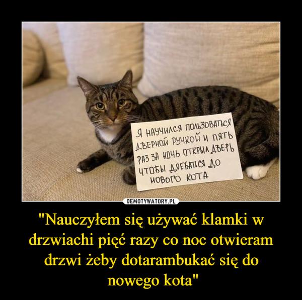 """""""Nauczyłem się używać klamki w drzwiachi pięć razy co noc otwieram drzwi żeby dotarambukać się do nowego kota"""" –"""